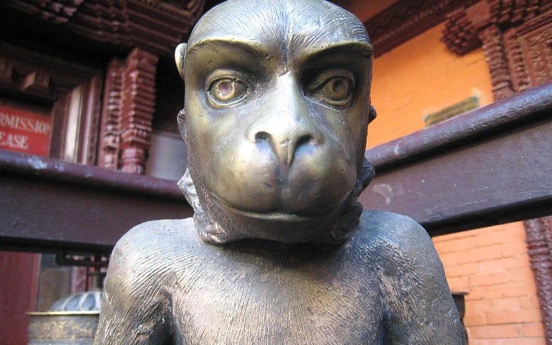 Monkey horoscope 2020